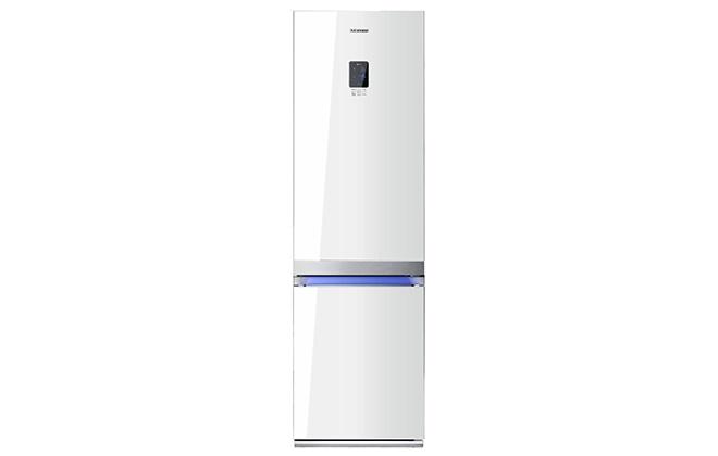 Внешний вид холодильника Samsung RL55TTE1L