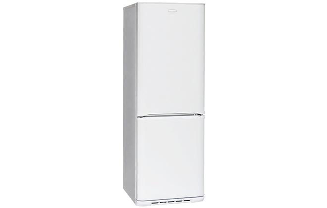 Дизайн холодильника Бирюса 133