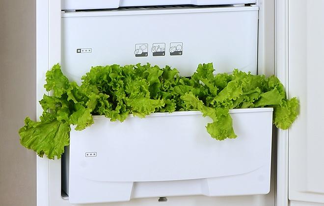 Нижние ящики холодильника Pozis RK-102