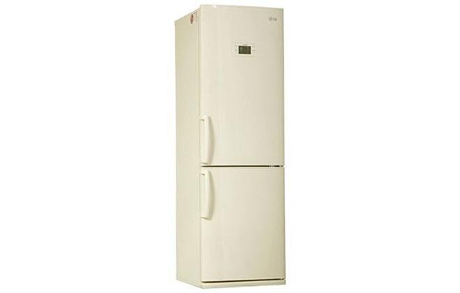 Внешний вид холодильника LG GA-B409UEQA