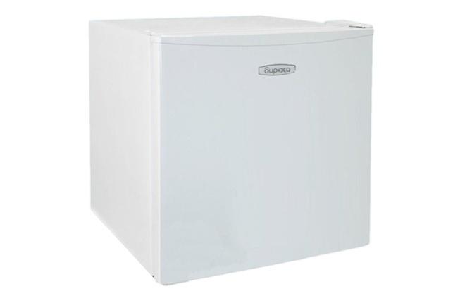Внешний вид холодильника Бирюса 50