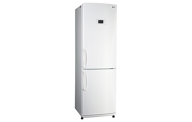 Внешний вид холодильника LG GA-E409UQA